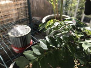 温室用ヒーター heater for green house